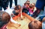 Организация и проведение специальных музейных занятий на територии музея